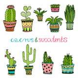 Cactuse och suckulent hand dragen uppsättning Klotter som är blom- i krukor Färgrika gulliga inreväxter för vektor stock illustrationer