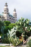 Cactuses and Casino de Monte-Carlo in Monaco Royalty Free Stock Images
