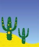Cactuses in desert Stock Image