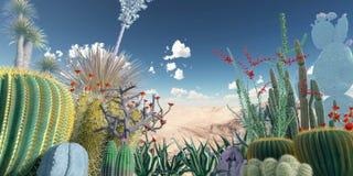 Cactuses Stock Photo