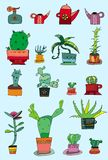 Cactuses in a pots - set. Vector collection of small cactuses in a pots Stock Illustration