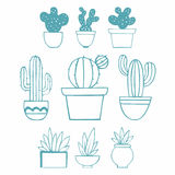 Cactuses. Vector illustration collection of cactus Stock Photos