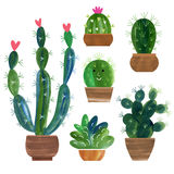Cactusinzameling Stock Foto