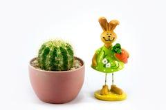 Cactuspot en de wortel van de konijnholding Royalty-vrije Stock Afbeelding