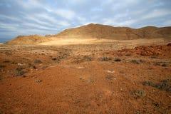 Cactuswoestijn met oceaan op de achtergrond onder de bewolkte hemel Royalty-vrije Stock Foto's