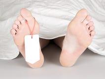 Cadáver con la etiqueta de la punta Fotografía de archivo libre de regalías