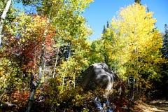 Caída de la montaña rocosa Imagen de archivo