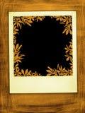 Caída retra Imagen de archivo libre de regalías