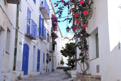 Cadaques typical street. Mediterranean town. A typical street in Cadaques, a Mediterranean town, with flowers and blue doors and windows Royalty Free Stock Photos