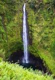 Caídas de Akaka, isla grande, Hawaii Imagenes de archivo