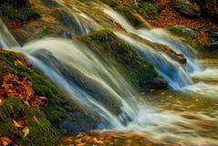 Caídas del otoño Foto de archivo libre de regalías