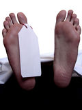 Cadaver with blank toe tag. Toe tag hanging of a corpse's feet royalty free stock images