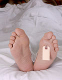 Cadaver feet Stock Photography