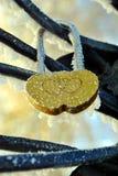 Cadeado do casamento no inverno Imagem de Stock Royalty Free