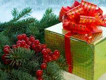 Cadeau, branches impeccables avec le viburnum de baies Photos stock