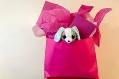 Cadeau d'anniversaire rose de sac avec le chiot bourré à l'intérieur Photographie stock