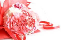 Cadeau de fleur d'oeillet photographie stock libre de droits