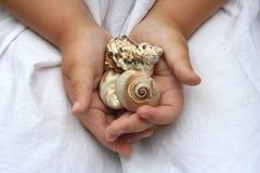 Cadeau de l'océan images libres de droits
