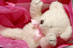 Cadeau de Teddybear Photos stock