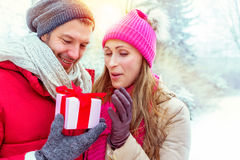 Cadeau de valentines dans des vacances d'hiver de ski Image libre de droits