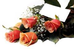 Cadeau des roses Image libre de droits