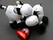 Cadeau du jour de Valentine Images libres de droits