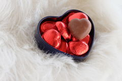 Cadeau du jour de Valentine fond romantique Photographie stock libre de droits
