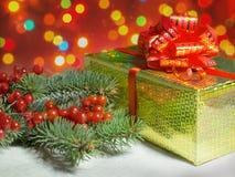 Cadeau et branches impeccables avec le viburnum de baies Photos stock