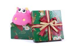 Cadeau mignon dans le cadre de cadeau vert Photo libre de droits