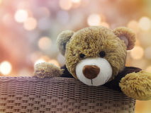 Cadeau mignon de poupée d'ours brun dans le panier sur l'amour romantique de bonbon à bokeh Image libre de droits