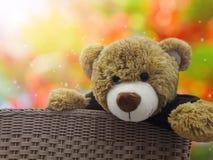 Cadeau mignon de poupée d'ours brun dans le panier sur l'amour romantique de bonbon à bokeh Images stock