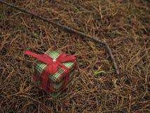 Cadeau sur l'herbe image stock