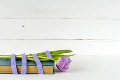 Cadeau, tulipes pourpres et livre au-dessus de table en bois Image stock