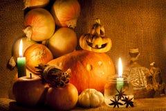 Cadeaux d'automne Images libres de droits