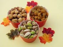 Cadeaux de fête de chute pour un mode de vie sain : noisettes, raisins secs d'or, pistaches Image libre de droits