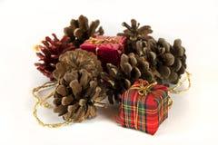 Cadeaux de Noël et cônes d'arbre, sur le blanc Images libres de droits