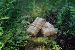 Cadeaux enveloppés en papier et rebobinés avec une corde sur un tronçon dans la forêt parmi les fougères Images stock