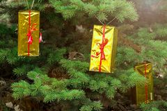 Cadeaux sur les branches d'un arbre de Noël sur la rue Photo stock