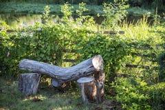 Cadeira da madeira Fotos de Stock