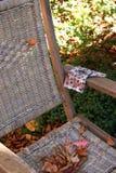 Cadeira de jardim fotografia de stock