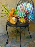 Cadeira de jardim com plantas carnudas Fotografia de Stock Royalty Free