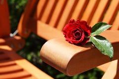 Cadeira de Rosa e de jardim Imagem de Stock Royalty Free