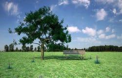 Cadeira na natureza Foto de Stock Royalty Free