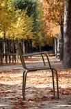 Cadeira tradicional no jardim de Luxembourg, Paris Fotografia de Stock Royalty Free