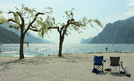 Cadeiras, árvores, e surfistas Fotografia de Stock