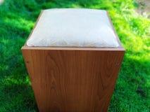Cadeiras da natureza para amantes de natureza imagem de stock royalty free