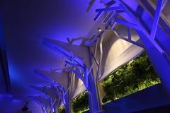 Cadeiras do casamento em um salão de baile do partido ou do evento Imagem de Stock