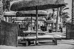 Cadeiras e guarda-chuvas vazios de plataforma da praia em um dia de verão quente fotografia de stock