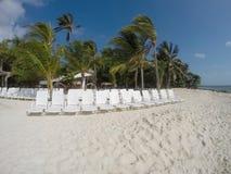 Cadeiras na praia Fotografia de Stock