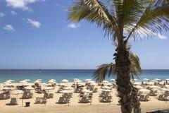 Cadeiras na praia tropical Foto de Stock